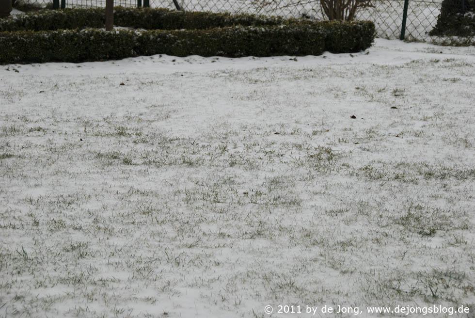 Frühling oder Winter