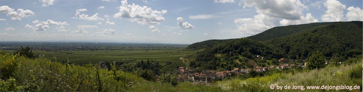 Blick in die Pfalz