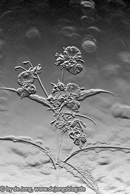 Blumenrelief