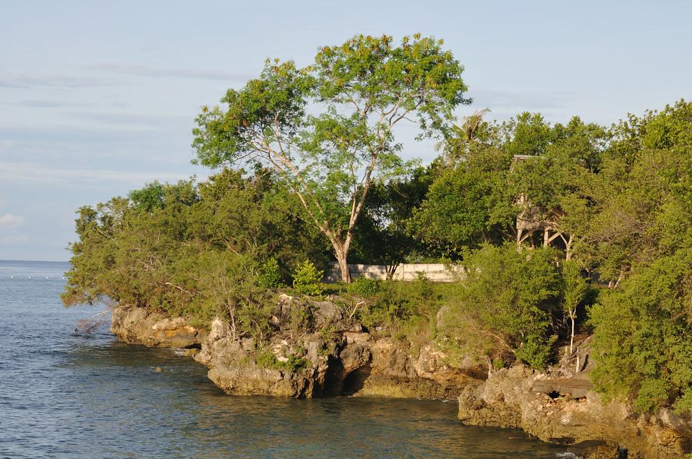 Blick vom Bootsanlegeplatz des Hotels auf die Küste Richtung Balikasag - Bohol - Philippinen